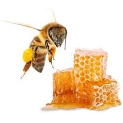 Peelingová soľ do sauny s vôňou medu 1000g